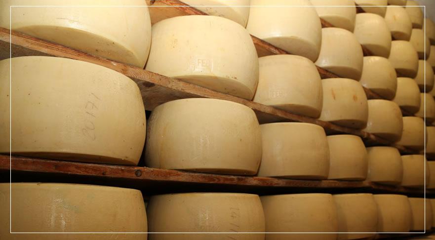 parmigiano-reggiano-vendita-a-parma1